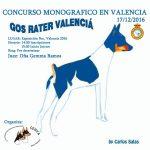 cartel-mono-valencia